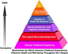 ACE-pyramid