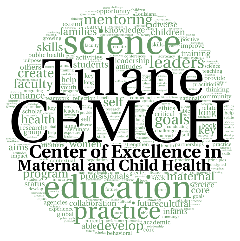 Tulanes Mental Health Meltdown Must >> About The Cemch Tulane Center Of Excellence In Mch